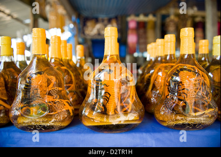 Donsao, Laos, bottles with cobras and scorpions on a market - Stock Photo