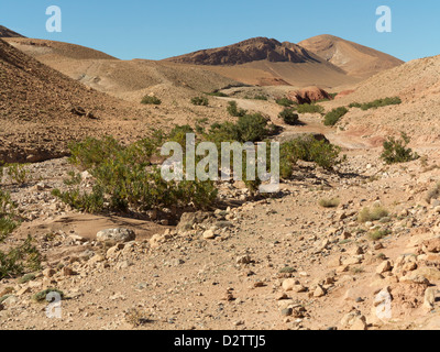 Dry Wadi Bed in the Vallee Du Dades area of Morocco, North Africa - Stock Photo