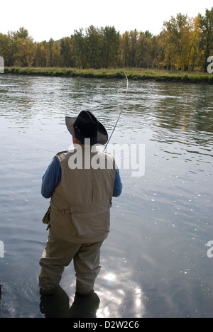 Guided fly fishing bow river alberta canada stock photo for Canada fishing guide