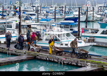 Fisherman and charter boat captains bringing in their catch of the day on the docks of Seward, Alaska, USA - Stock Photo