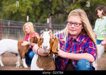 Farm girls taking care of livestock goats, petting and grooming for a stock show - Stock Photo