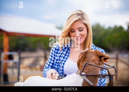 Farm work - young woman preparing goat for stock show - Stock Photo