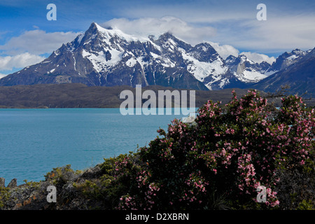 Lago Pehoe and Paine Grande, Torres del Paine National Park, Patagonia, Chile - Stock Photo