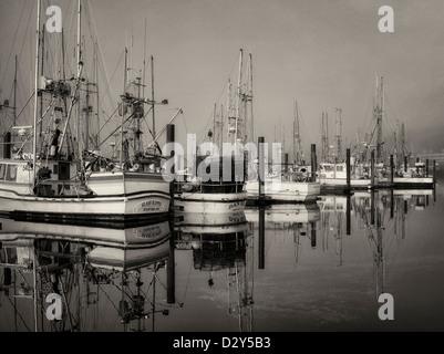 Boats with fog at Newport Harbor. Oregon - Stock Photo