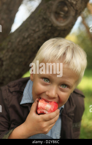 blond 6-year boy eating red apple under the tree - Stock Photo