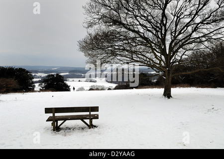 The Albury Downs near Guildford  covered in heavy snow - Stock Photo