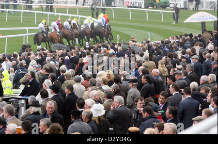 Liverpool, UK, viewers watching horses and jockeys in the race - Stock Photo