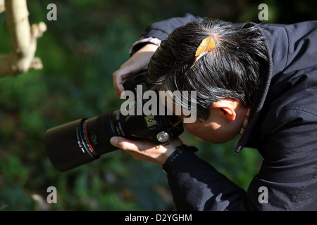 Kamakura, Japan, man with a leaf on his head photographed in nature - Stock Photo