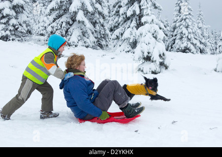 mother and son sledding on Sonnenberg near St. Andreasberg, Harz Mountains, Lower Saxony, Germany - Stock Photo