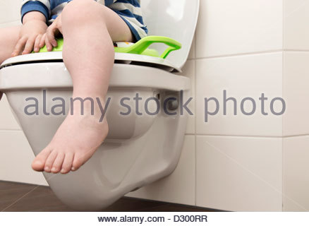 how to toilet train a 2 year old