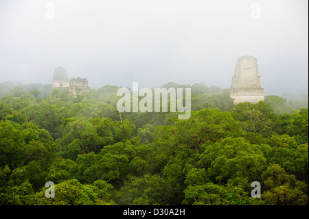 Tikal Maya ruins, Unesco World Heritage site, Guatemala, Central America - Stock Photo