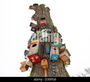 various colorful bird nest boxes houses hang on old dead tree trunk. art for birds. - Stock Photo