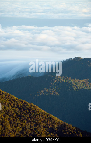 view from the summit of Volcan Baru, Volcan Baru National Park, Chiriqui province, Panama, Central America - Stock Photo