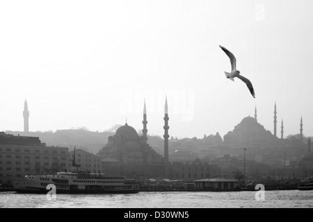 Seagull over Beyazit tower, New Mosque (Yeni Camii), Suleyman Mosque (Suleymaniye Camii) in Eminönü, Golden Horn - Stock Photo