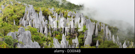Panoramic view of limestone Pinnacles of Mount Api, Gunung Mulu National Park. Sarawak, Borneo, Malaysia. - Stock Photo
