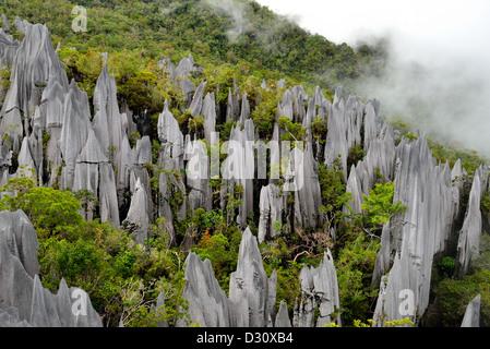 Limestone Pinnacles of Mount Api, Gunung Mulu National Park. Sarawak, Borneo, Malaysia. - Stock Photo