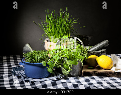 Still life with fresh herbs and kitchen utensils - Stock Photo