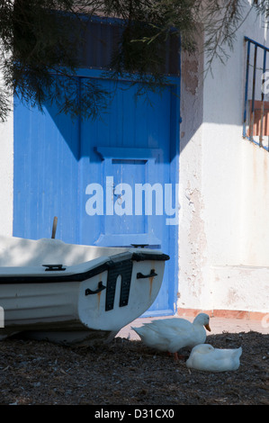Two white ducks sitting in the shade by a boat on the beach at Klima, Milos, Greece - Stock Photo