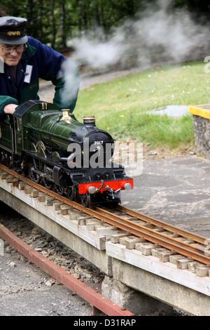 Man driving a miniature 4-6-0 steam locomotive - Stock Photo