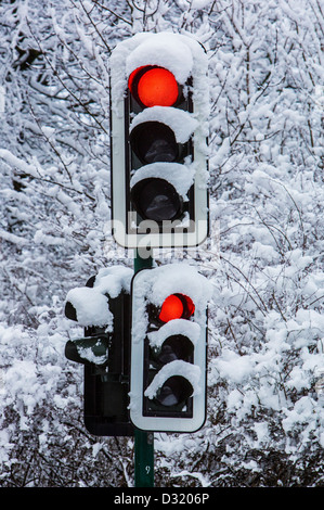 Winter, snow covered traffic lights. - Stock Photo
