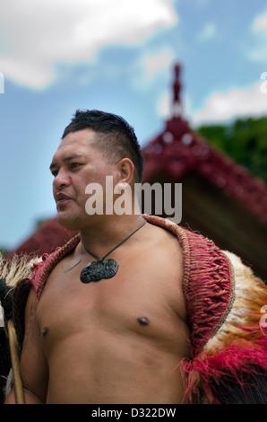 Maori Chief perform Haka dance during Waitangi Day on February 6 2013 in Waitangi NZ. - Stock Photo