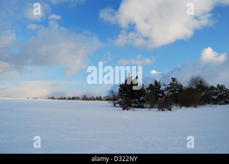 A dramatic gradient of dark and bright blue sky and clouds overlooking a vast covering of snow on a field with trees - Stock Photo