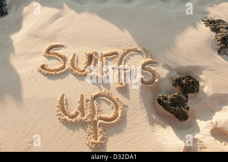 surfs up written in the sand on a beach - Stock Photo