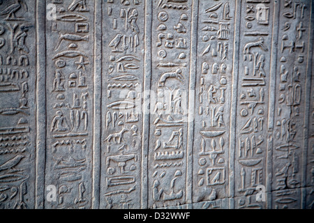 Hieroglyphs on the Temple of Kom Ombo by the River Nile in Egypt - Stock Photo