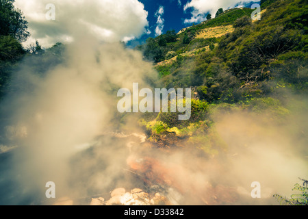 Beautiful steaming nature at geothermal area in Wai-O-Tapu, Rotorua, North Island, New Zealand. - Stock Photo
