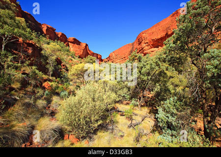 Kings Canyon Northern Territory Central Australia - Stock Photo