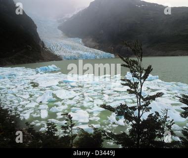 Chile, Region Magallanes, Seno Ultima Esperanza, Last Hope Sound, the Serrano glacier sends icebergs into a lagoon - Stock Photo