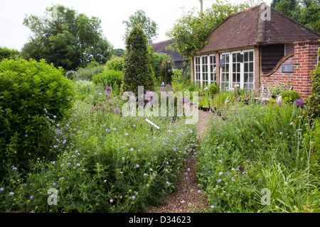 Pathway through spring borders to the house. - Stock Photo