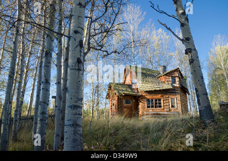 Unique log cabin,  83 Mile House, Cariboo Region, British Columbia, Canada - Stock Photo
