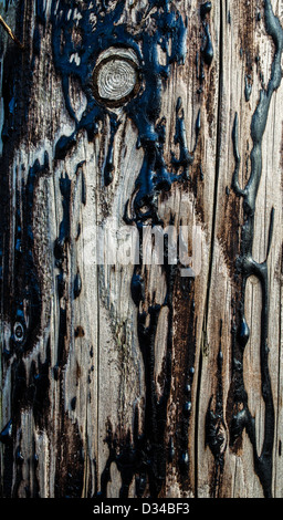 Wood and Tar Texture - Stock Photo