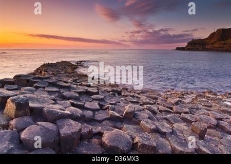 Giants Causeway north Antrim coast County Antrim Northern Ireland GB UK Europe