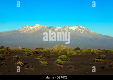 Early morning summer view of Mount Ruapehu on the Volcanic Plateau. - Stock Photo