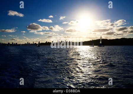 Sydney Harbor skyline in silhouette with sailing yachts in the water at sunset - Stock Photo