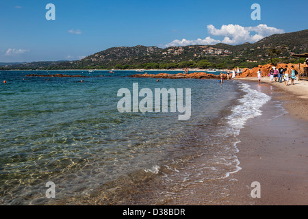 sandy Palombaggia beach near Porto Vecchio, Corsica, France - Stock Photo