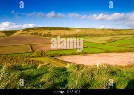 Fields in rural landscape - Stock Photo