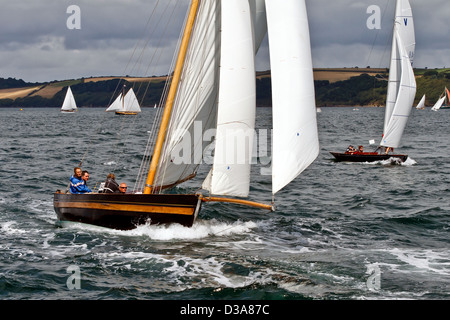 Stella competes in Falmouth Classics. - Stock Photo