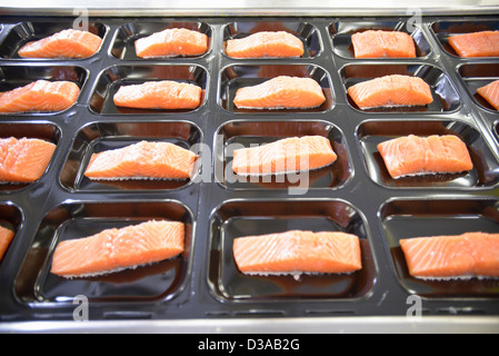 Salmon fillets on packaging in food factory - Stock Photo
