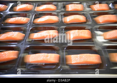 Salmon fillets on packaging in food factory, blurred motion - Stock Photo