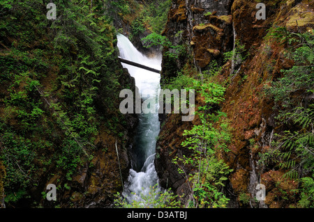 Waterfall falls river whitewater Little Qualicum Falls Provincial Park British Columbia BC Canada - Stock Photo