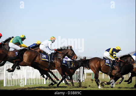 Jockeys jump their horses over a fence during The Cheltenham Festival an annual horse racing event in England - Stock Photo