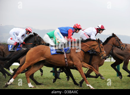 Jockeys ride their horses during The Cheltenham Festival an annual horse racing event in England - Stock Photo