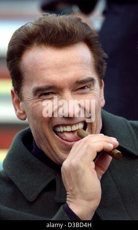 (dpa) - Austrian-born Hollywood star Arnold Schwarzenegger is in best mood and has a cigar in his mouth at the Hahnenkamm - Stock Photo