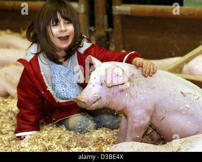 (dpa) - Five-year-old Lucy plays with the pigs at the Green Week ('Gruene Woche') trade fair in Berlin, 21 January - Stock Photo