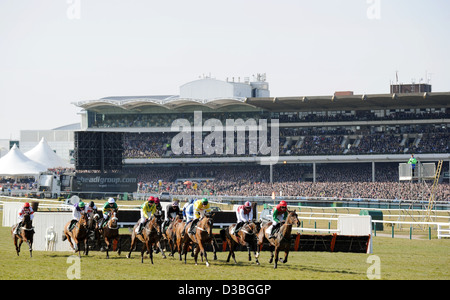 Jockeys ride their horses in front of the Grandstand during The Cheltenham Festival an annual horse racing event - Stock Photo