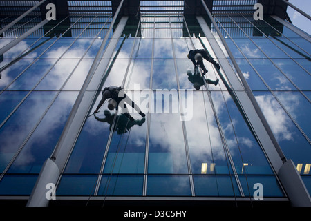 Using a system of ropes and cables, a team of window cleaners wipe plate-glass and lower themselves from a City - Stock Photo