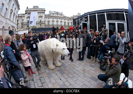 Greenpeace Polar bear visits London Fashion Week 15th February 2013 Somerset House, London, England, UK, GB - Stock Photo